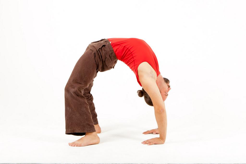 Йога для начинающих для спины